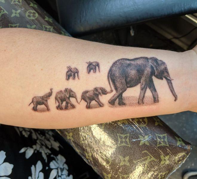 Marcus - Elephants